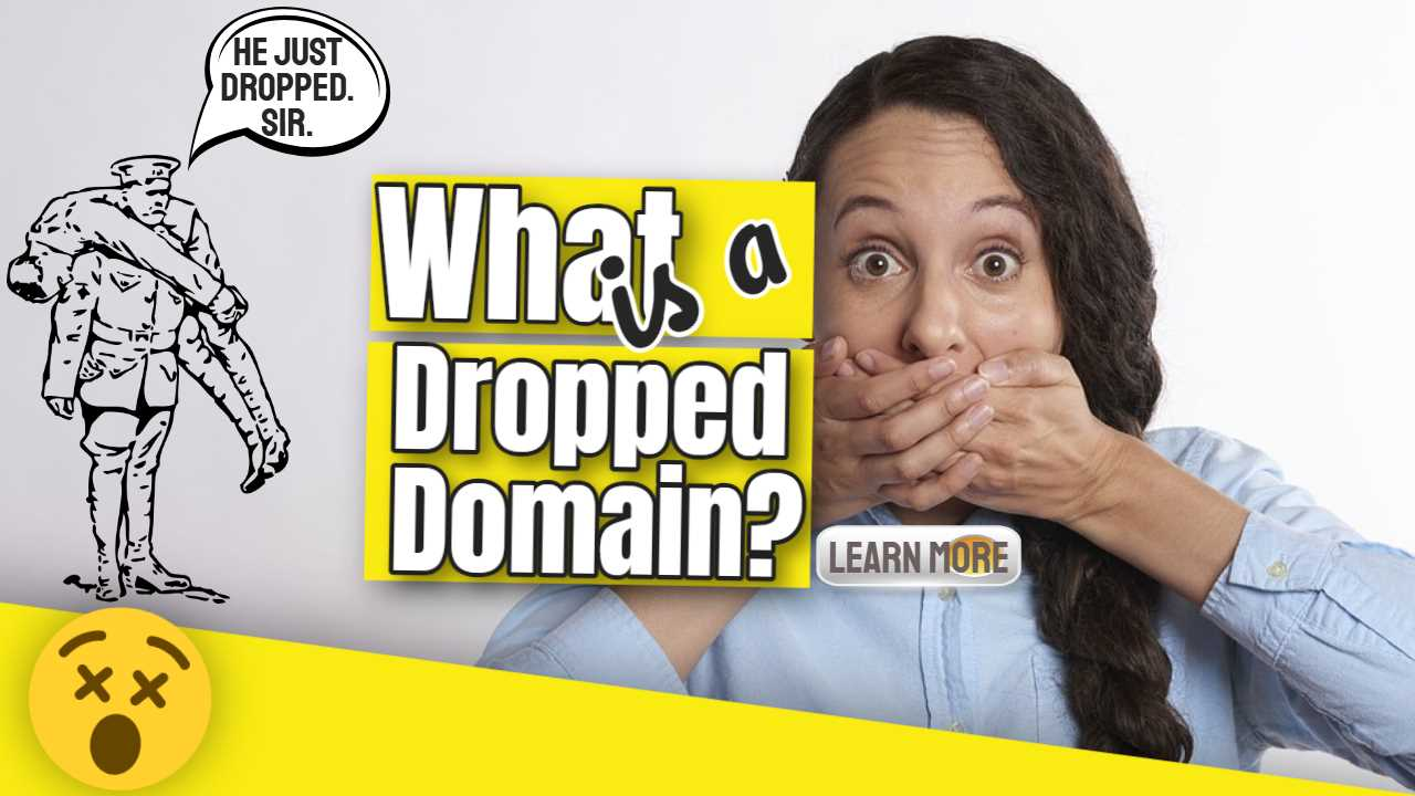 """Featured image text: """"What is a Dropped Domain?""""."""