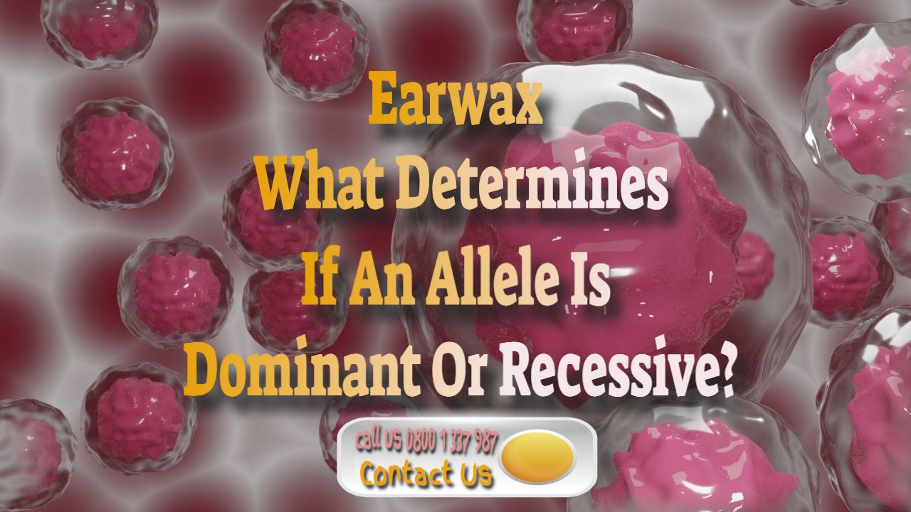 earwax allele dominant or recessive
