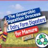 Dairy Farm Digesters – Anaerobic Digestion Process For Manure